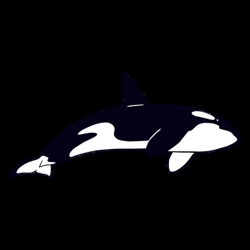 Golpe lleno de ballena asesina