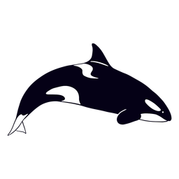 ballena asesina - 1