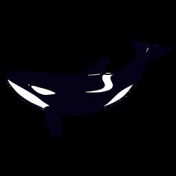 Killer whale swimming filled-stroke