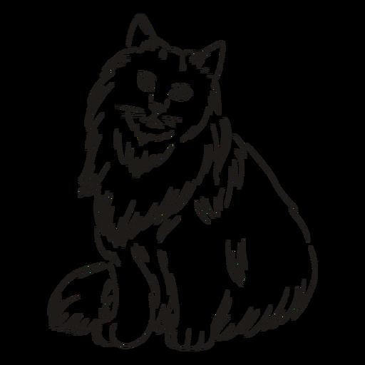 Golpe de gato sentado