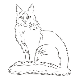 Golpe de gato elegante