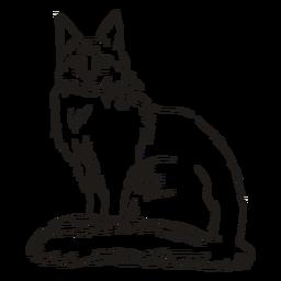 Traço de gato elegante