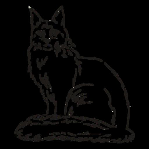 Golpe de gato elegante Transparent PNG