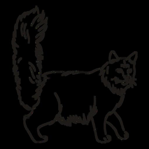 Golpe de gato caminando