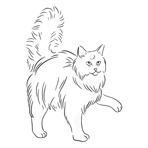 Cat giving paw stroke Transparent PNG
