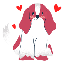 Lovely dog flat