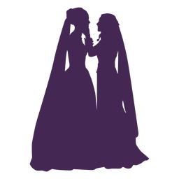 Wedding lesbian couple silhouette