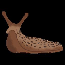 Ilustração de deslizamento da lesma