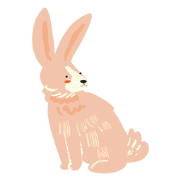 Sitting rabbit flat