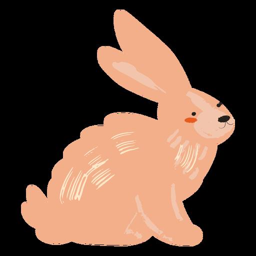 Plano de conejo lateral