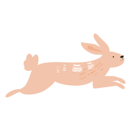 Jumping rabbit flat