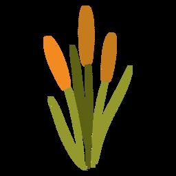 Orange garden plant flat
