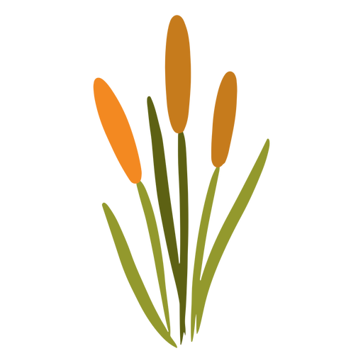 Long flower garden plant Transparent PNG