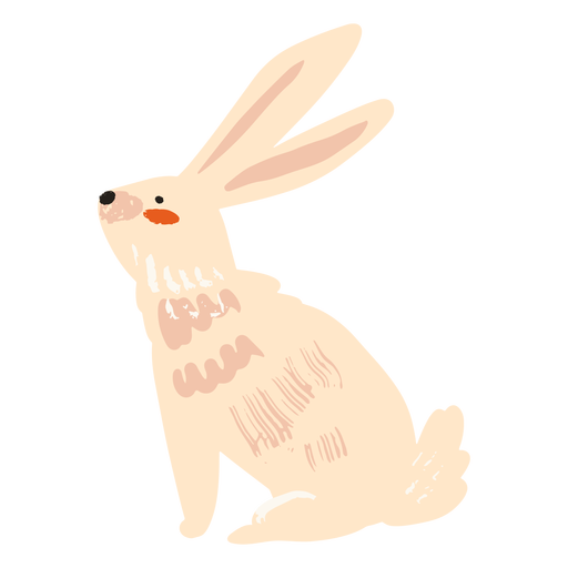 Conejo sentado plano