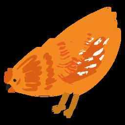 Pollo comiendo plano