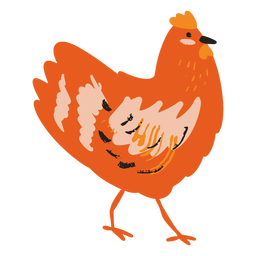 Pollo de pie plano