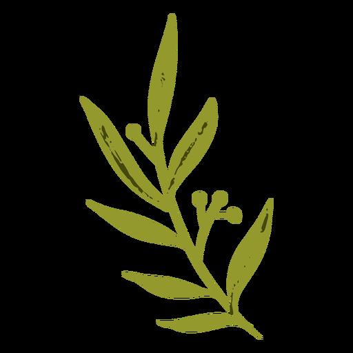 Green vegetation flat