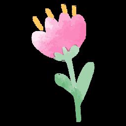 Pink tulip watercolor