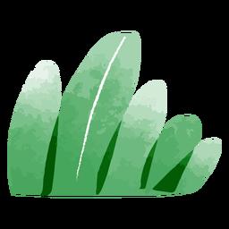 Acuarela de arbusto de jardín