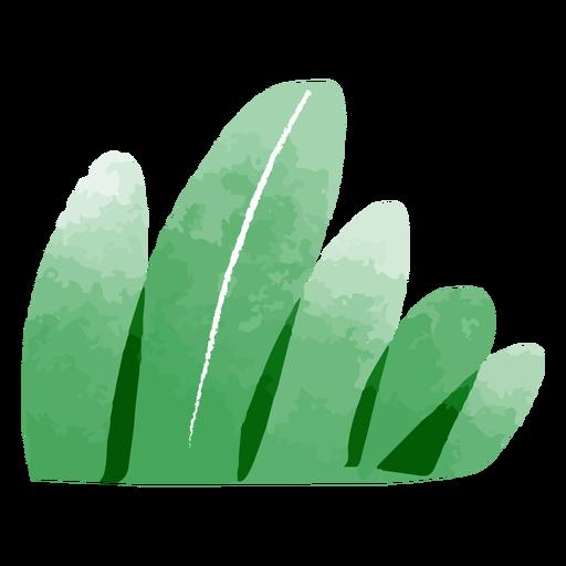 Garden bush watercolor Transparent PNG