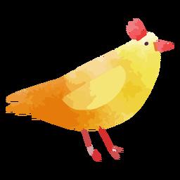 Acuarela de pollo de granja