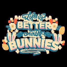 Letras da vida do coelho
