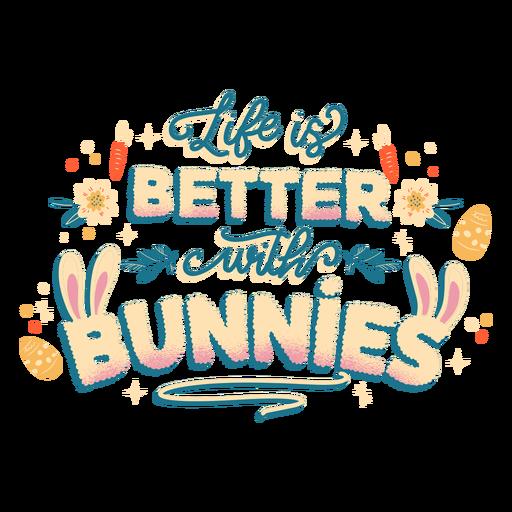 Letras de la vida del conejito