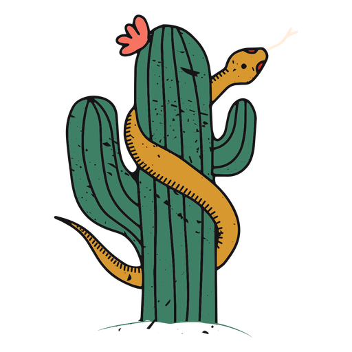 Trazo de color de cactus del desierto