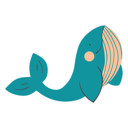 Smiling whale flat