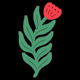 Long stem red flower