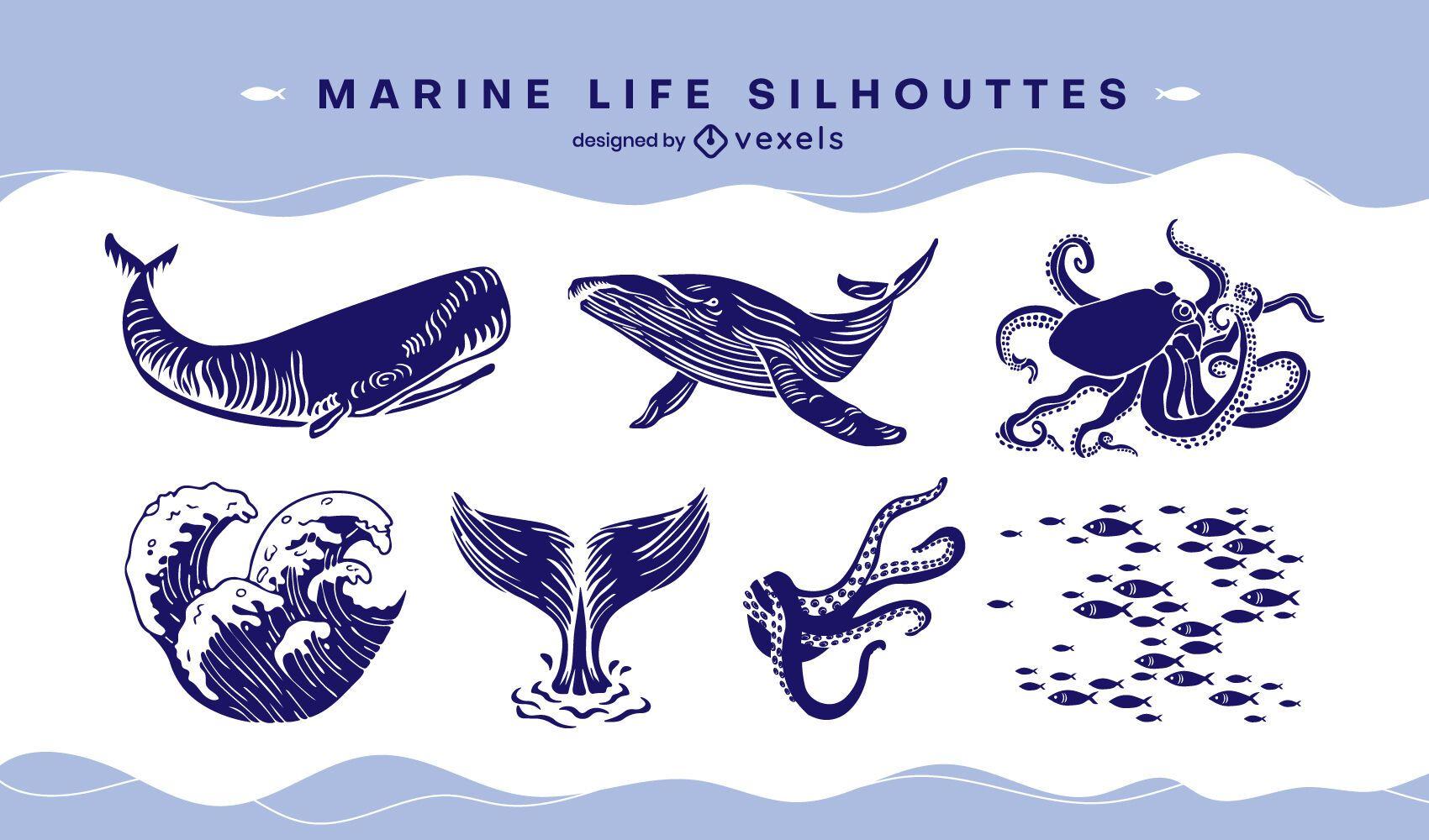 Recorte del conjunto de vida marina