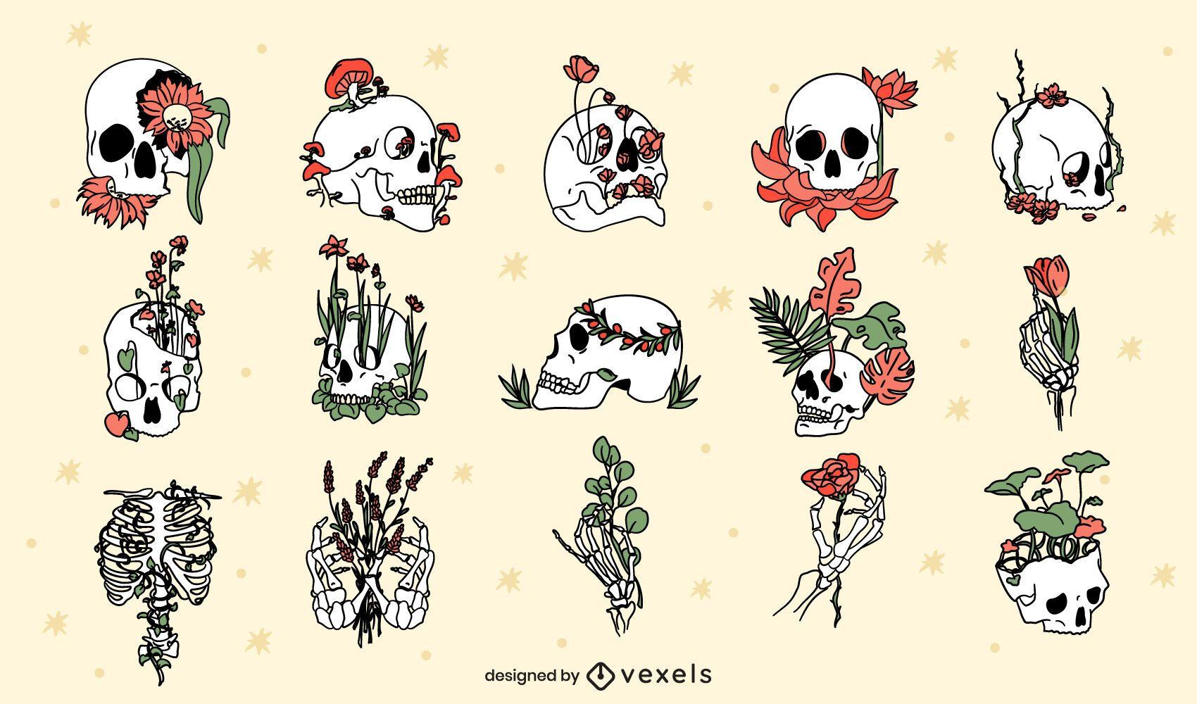 Conjunto de calavera botánica