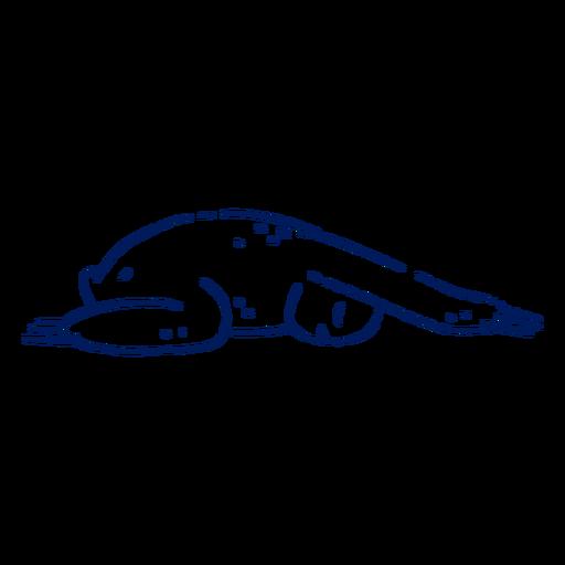 Curso de preguiça de ioga
