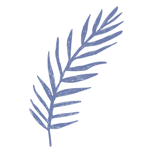 Palm leaf filled-stroke Transparent PNG