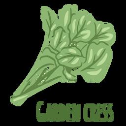 Garden cress herb flat
