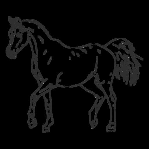 Cavalo realista desenhado à mão