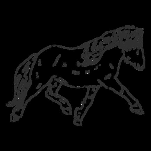 Pony realista dibujado a mano