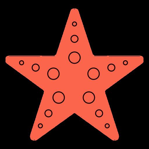 Starfish summer flat