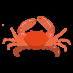 Cangrejo animal acuático