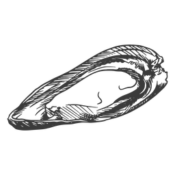 Mariscos dibujados a mano - 0