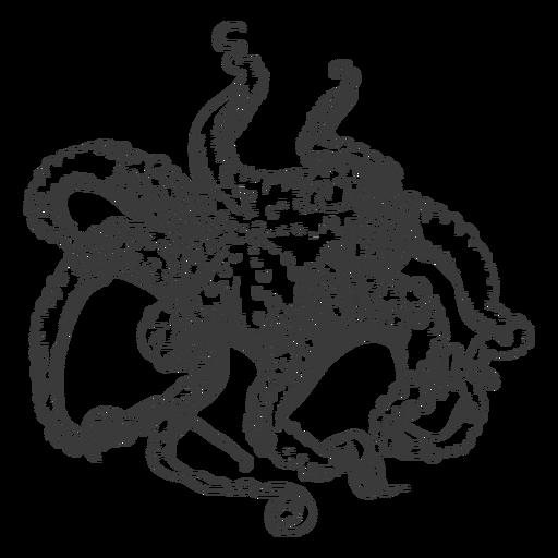 Octopus sea hand-drawn