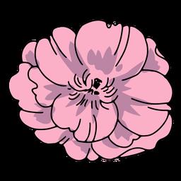 flores de calavera - 21