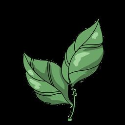 flores de calavera - 26