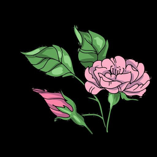 Flower buds illustration