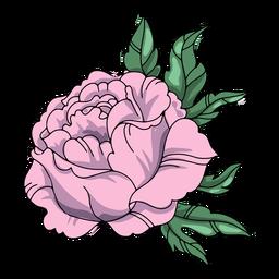 Ilustración detallada de la flor