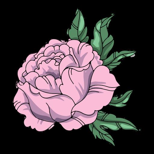 Ilustraci?n detallada de la flor