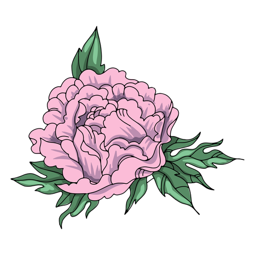 Flower nature illustration