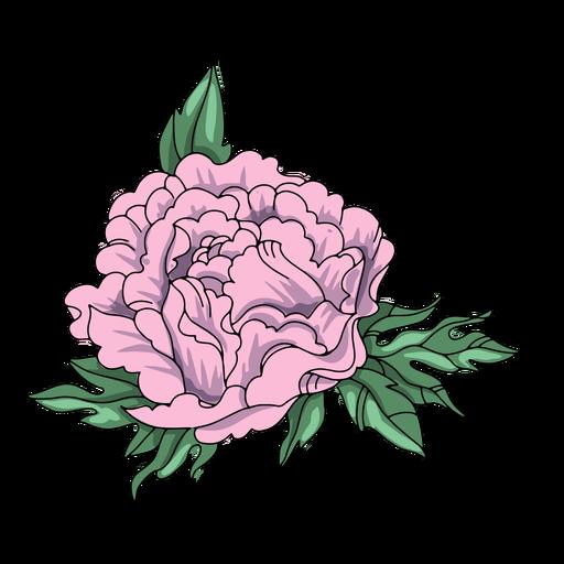 Ilustração da natureza da flor
