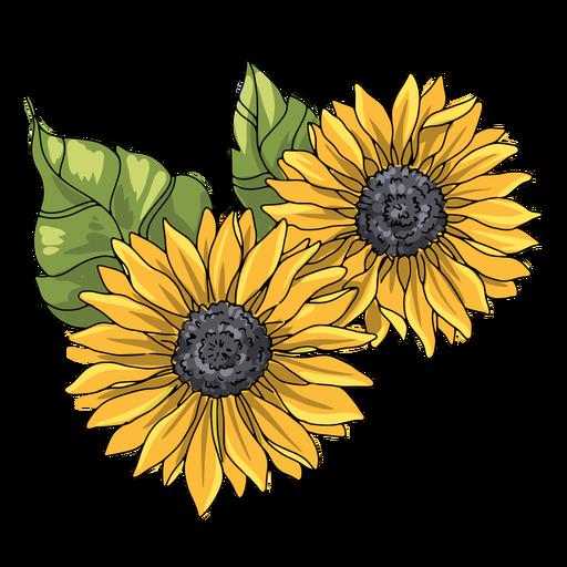 Ilustração de dois girassóis