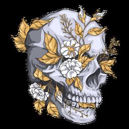 Ilustración de cráneo de plantas